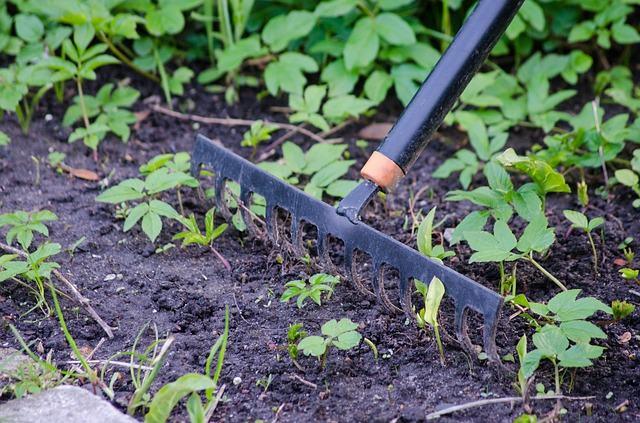 bon jardinier Béziers